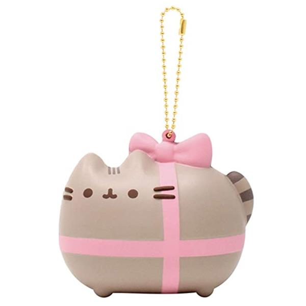 Pusheen gift wrapped squishy